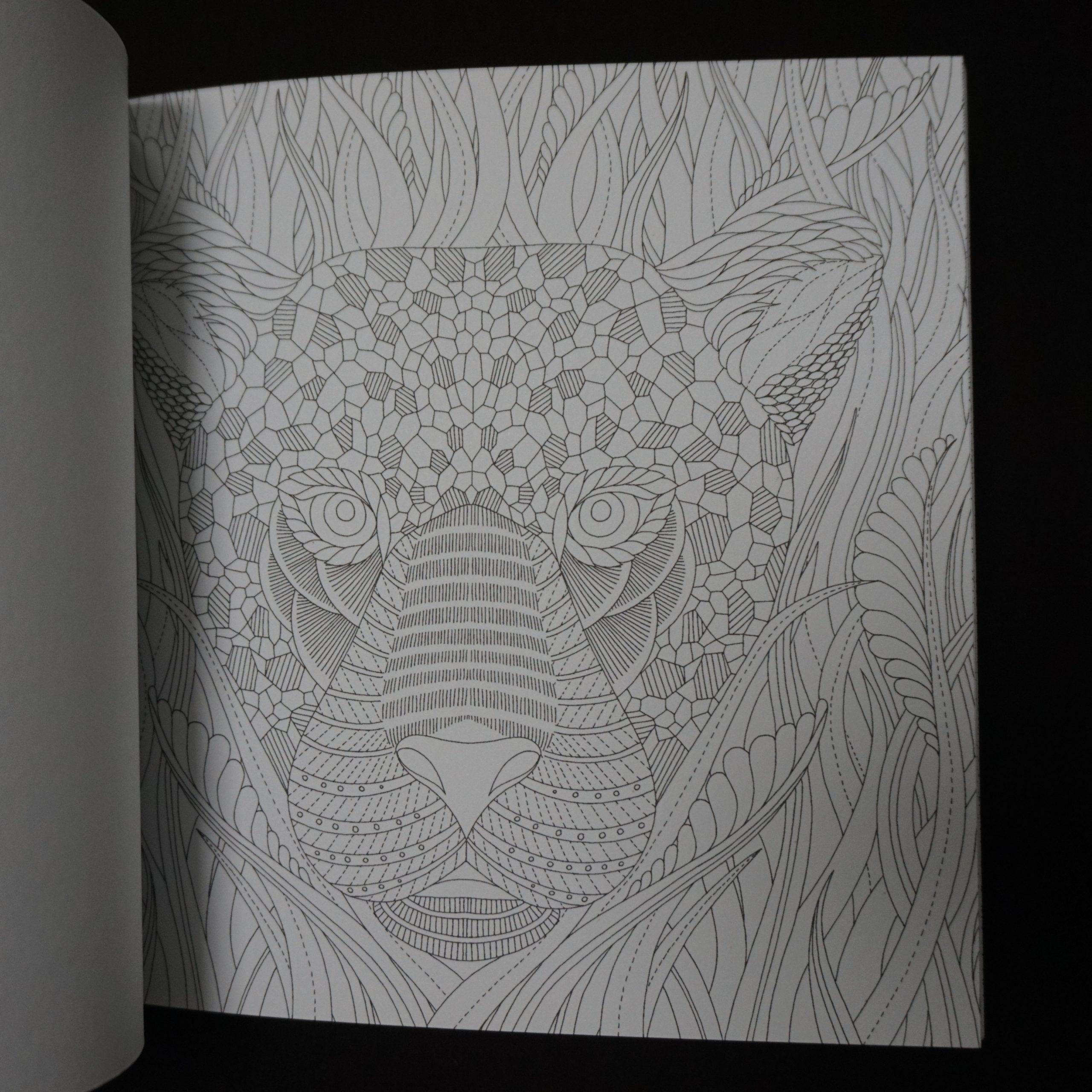Le petit livre de coloriages - Forêt tropicale